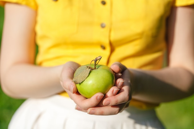 Farming, gardening, harvesting and people concept - woman hands holding apples