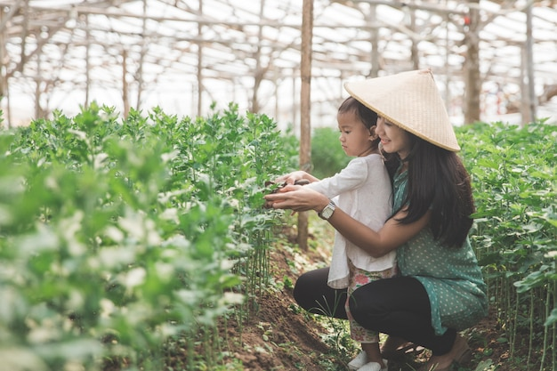 Farming with kid