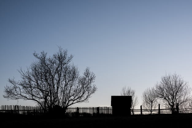Farmstead in east europa with fence and trees in sunset background.