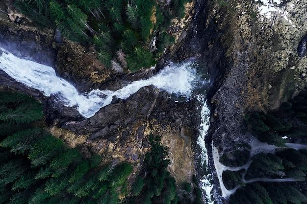 森の岩の上の滝の起源の魅力的なハイアングルショット