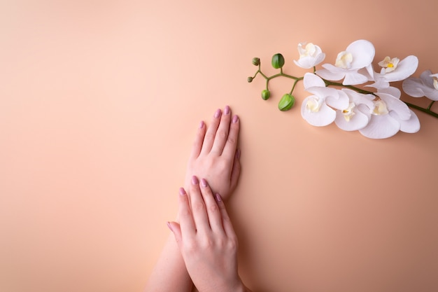 Fashion, female hands with manicure, nail care, white orchid flowers,  healthy skin and natural cosmetics. top view contrasting against a powdery background.