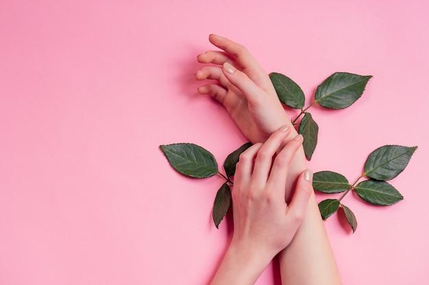 ファッションハンドナチュラルコスメティックス女性、赤と白のバラの美しい花の葉ととげのハンドハンドケア。バレンタインデーの腕の女の子のスタジオはピンクの背景を撮影しました