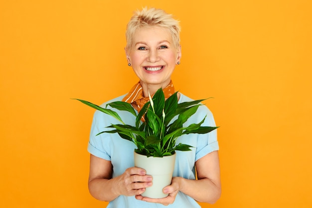 Bella signora alla moda con capelli corti tinti in posa su sfondo giallo che tiene il fiore del vaso. donna matura che cresce pianta d'appartamento, godendo della pensione. persone, botanica e concetto di domesticità