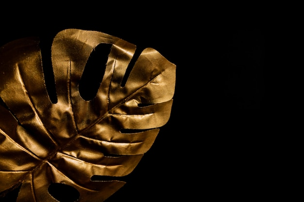 Fashionable luxury black background with gold monstera leaf. copy space for text