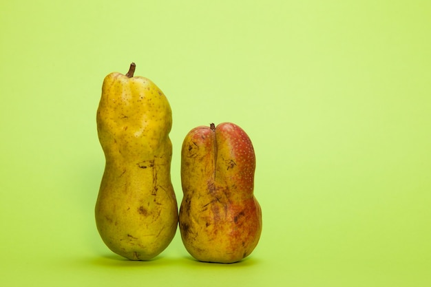 Fashionable ugly organic fruits - ripe pears on a green background.