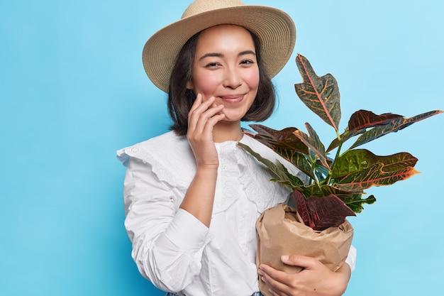 세련된 젊은 브루네트 아시아 여성은 흰 블라우스를 입고 모자에 화분에 심은 식물을 종이로 싸서 파란 벽 위에 부드럽게 고립된 꽃 애호가 미소를 선물합니다