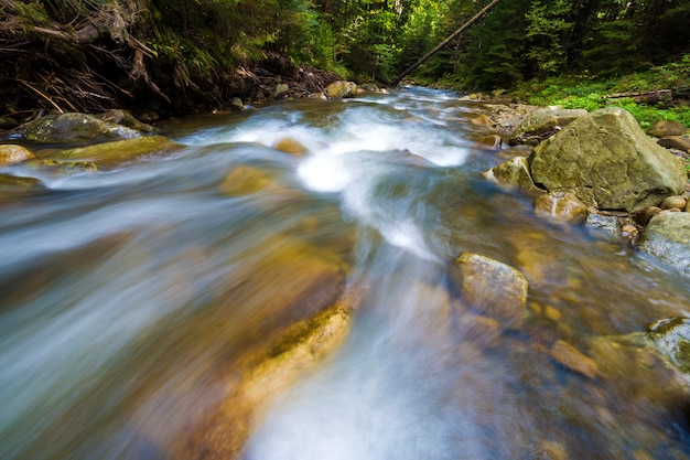 Fast flowing through wild green forest river with crystal clear smooth silky water falling from big wet stones in beautiful waterfalls on bright sunny summer day. long exposure shot.
