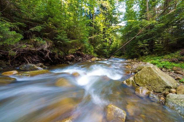 明るい晴れた夏の日に美しい滝の大きな濡れた石から落ちる透明な滑らかな絹のような水で野生の緑の森の川を高速で流れます。長時間露光ショット。