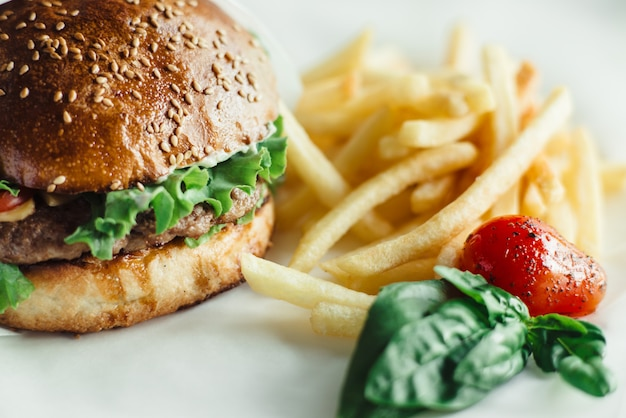 Fast food, burger with fries on the dish