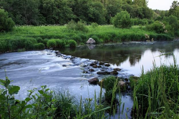 Быстрая лесная река. вечерний летний пейзаж