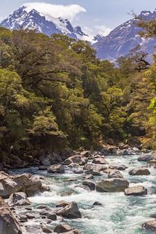 Быстрая река среди зелени новой зеландии