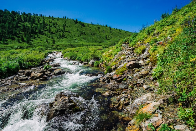 Fast water stream of mountain creek among boulders in bright sunlight in valley