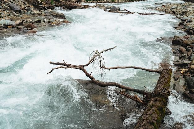 Fast water stream in mountain creek .