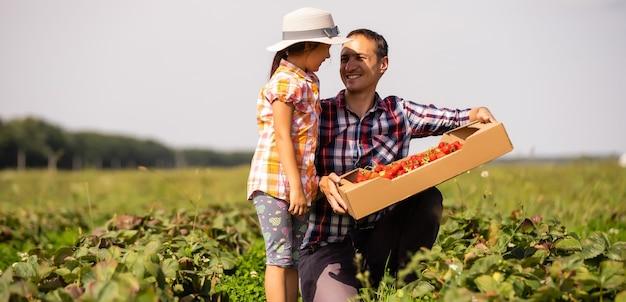Отец и ребенок с дикой клубникой летом