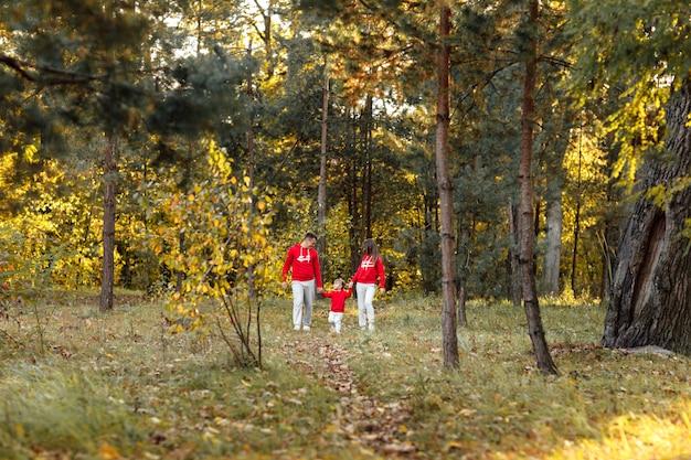 父と母は小さな娘を手で押し、秋の公園を歩いています。