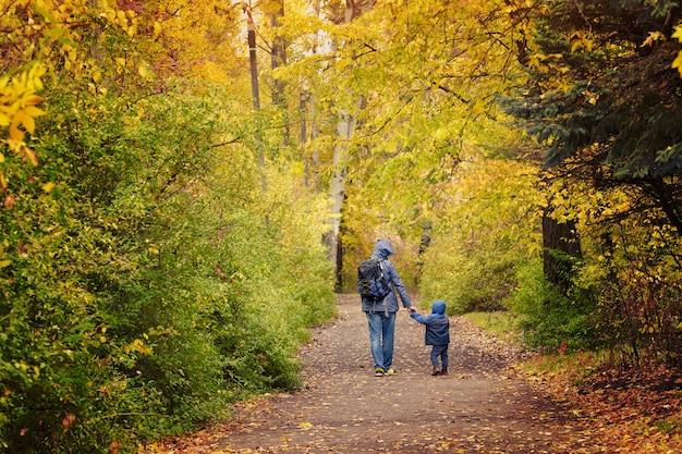 父と息子は秋の公園を手で歩いています。背面図