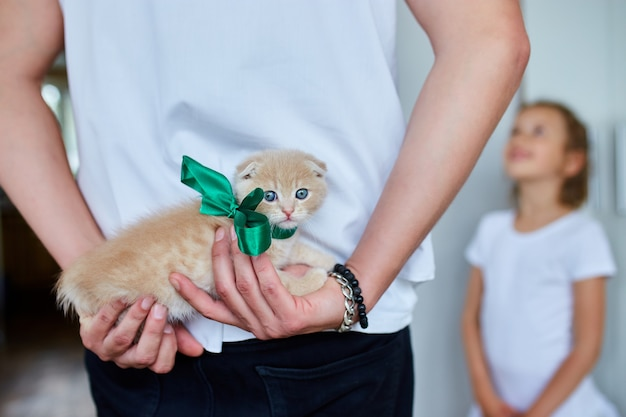 Father man holding little kitten in hand, surprise presenting cat to happy daughter girl