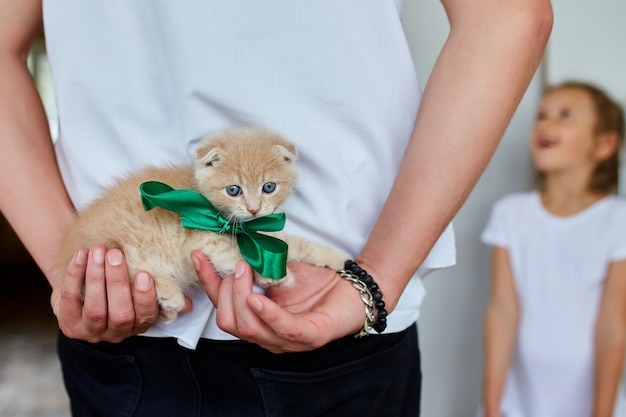 Father man holding little kitten in hand, surprise presenting cat