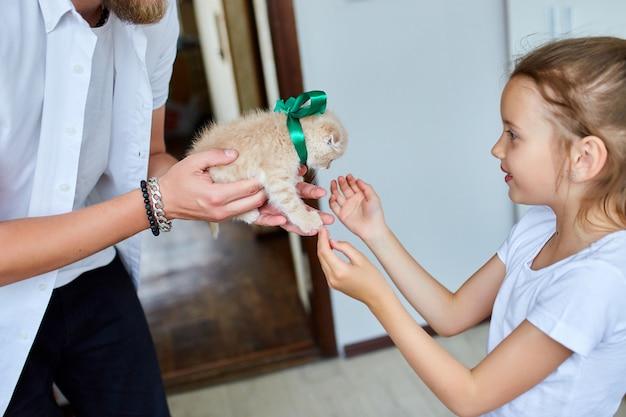 小さな子猫を手に持った父男、驚きの提示猫