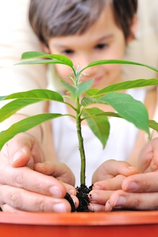 Father and son carefuly cultivating a plant