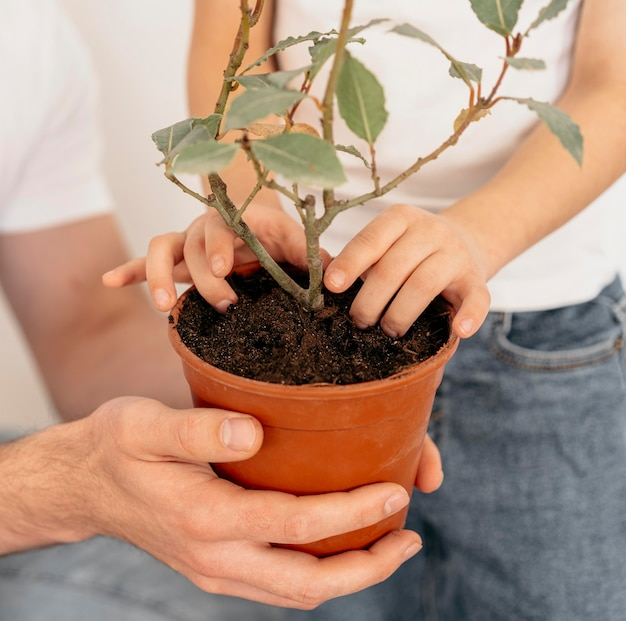 Father and son holding pot of plant