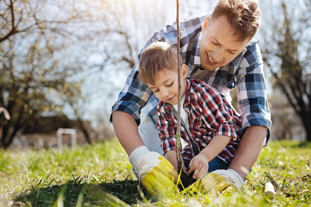 Father and son standing on knees while digging into the soil together and setting a fruit tree