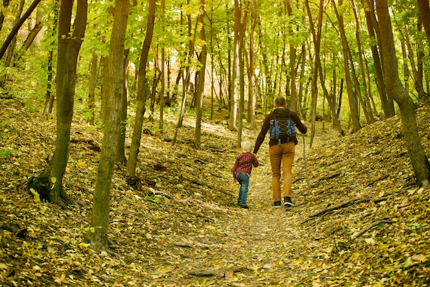 Father and son walking in the autumn forest. back view