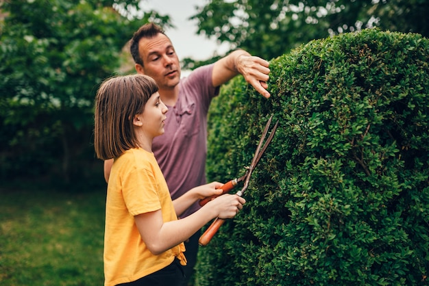 Father teaching daughter to prune hedge