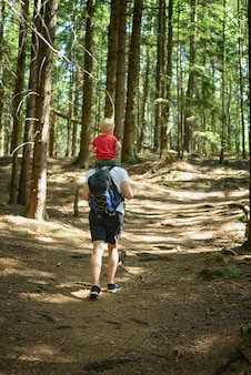 Father with backpack and young son on his shoulders walking on a coniferous forest. back view. activities and tourism