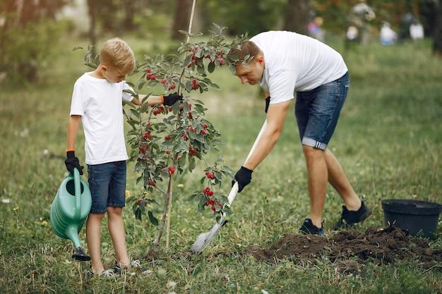 작은 아들과 아버지는 마당에 나무를 심고있다
