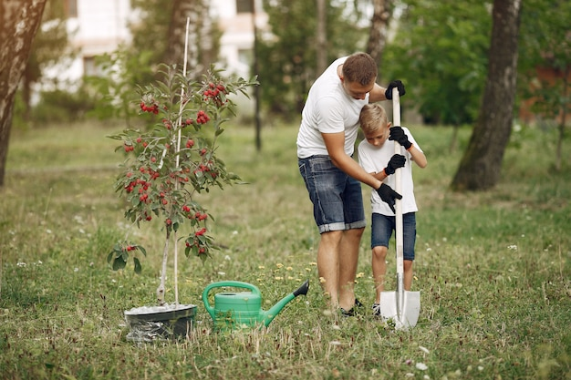 Father with little son are planting a tree on a yard