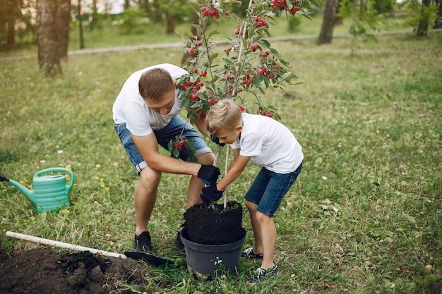 Il padre con il piccolo figlio sta piantando un albero su un'iarda