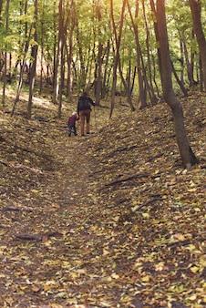 秋の森を歩く息子を持つ父。背面図