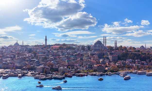 Fatih district of istanbul, view from the galata tower.