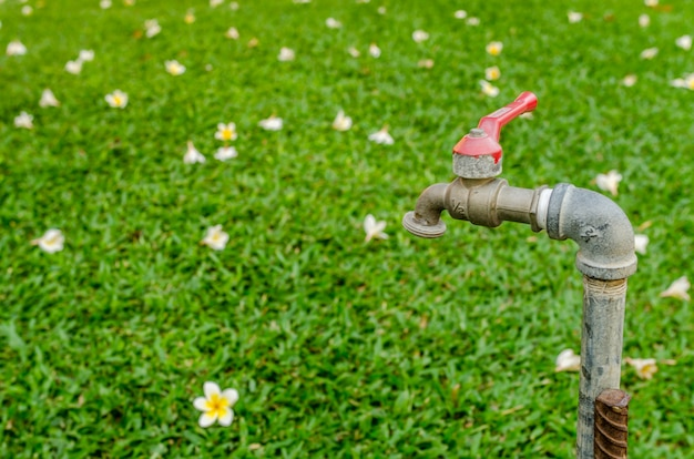 Faucet in garden