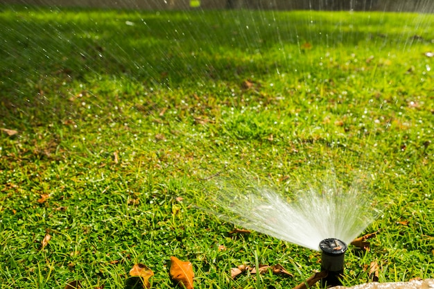 Faucet watering lawn