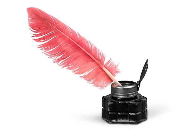 Feather pen into the inkwell isolated