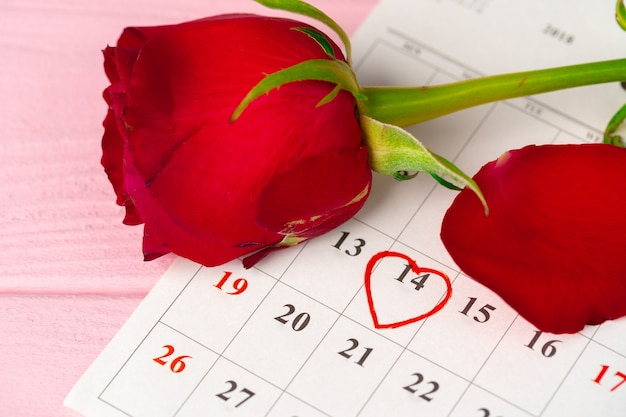 February calendar page with red rose on pink wooden table