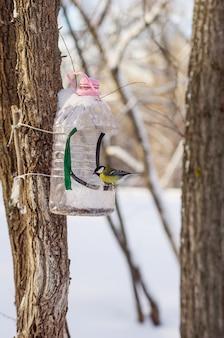 겨울 도시 공원의 새를위한 피더
