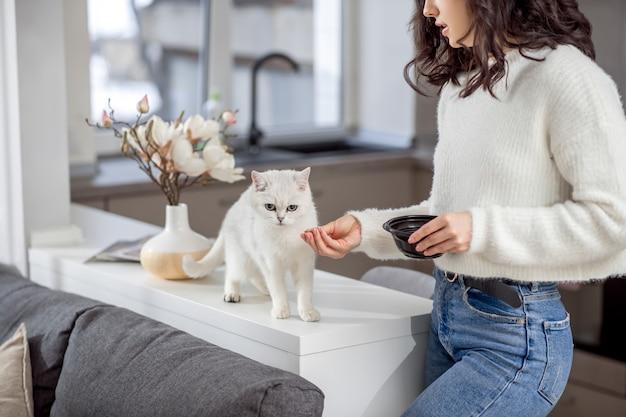 고양이에게 먹이주기. 그녀의 흰 고양이 먹이 귀여운 젊은 여자