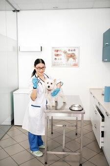Кормление после процедур. темноволосый опытный ветеринар в перчатках кормит собаку после медицинских процедур