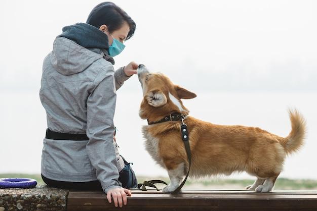 川の近くの都市公園でのコーギーの餌やり。検疫を保護して歩く。犬の毛皮にアレルギーのあるペットの飼い主。