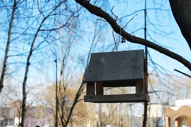 나무 위의 새들의 먹이통