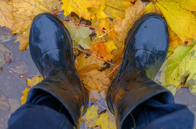 Feet men in black rubber boots in a puddle with autumn yellow leaves