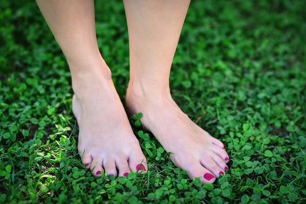 Ноги женщины в зеленой траве молодая женщина босиком гуляет по свежей зеленой траве