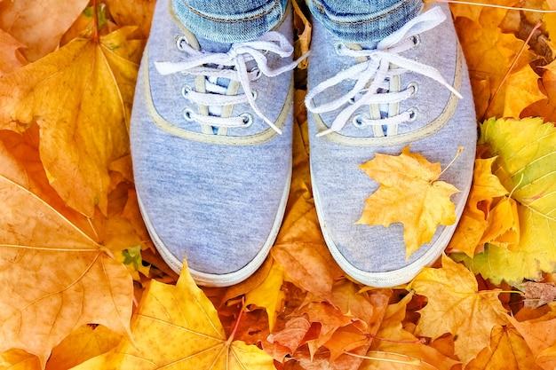 가을 잎에 발