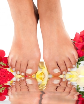 Feet qnd roses