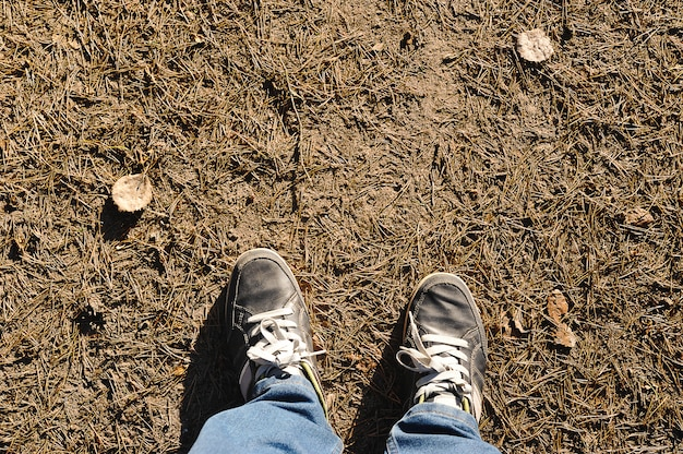Feet in sneakers on the ground pine needles