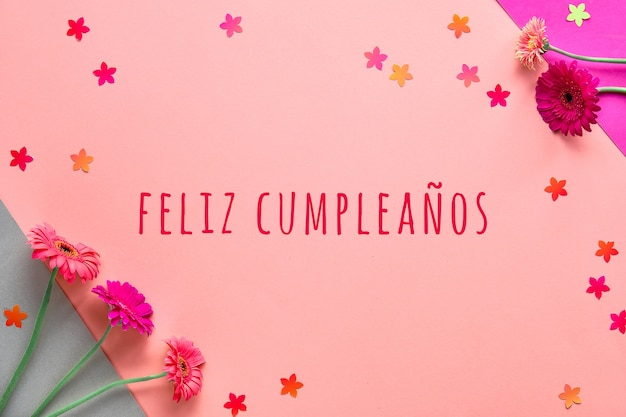 Feliz cumpleanos means happy birthday in spanish language. vibrant flat lay with gerbera flowers