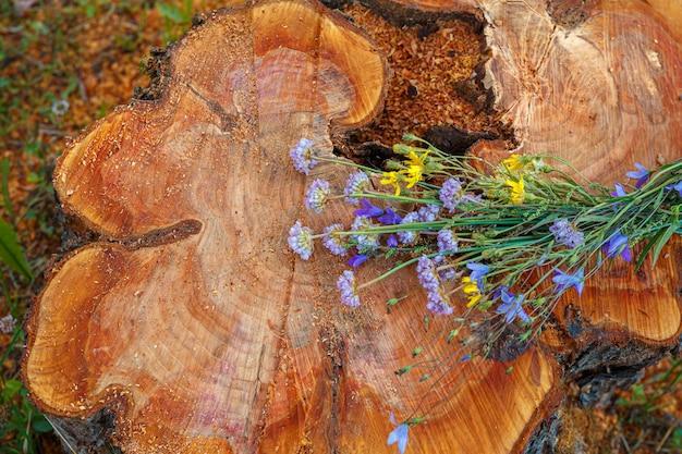 倒れた木の切り株-毎年恒例のリングと野生の花のある幹部